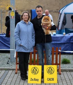 International Dog Show (CACIB) OPOLE